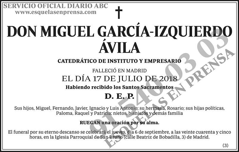 Miguel García-Izquierdo Ávila